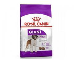 Buy Royal Canin Giant Adult Dog Food 4 KG